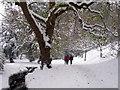 TQ8010 : Snowy path through Alexandra Park by Oast House Archive