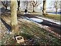 SP2872 : Plaque beneath tree, Abbey Fields by John Brightley