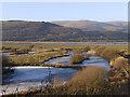 SN6896 : Frozen ponds, RSPB Ynyshir : Week 50