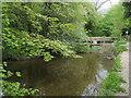 SU0394 : River Thames by Shaun Ferguson