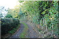 TQ8822 : High Weald Landscape Trail by Cock Wood by N Chadwick