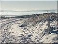 SO4772 : Summit road, High Vinnalls by Richard Webb