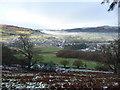 SJ0437 : Bracken hillside overlooking Llandrillo : Week 52