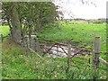NS8454 : Field boundary by Richard Webb