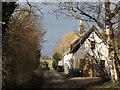 TL4962 : Horningsea: thatched cottage on Dock Lane : Week 1