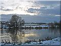 NO0719 : River Earn near Aberdalgie : Week 2