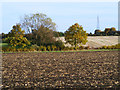 SP7704 : Farmland, Bledlow by Andrew Smith