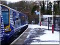 NS2071 : Class 380 train at Inverkip : Week 2