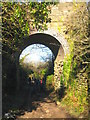 SW7349 : Old railway bridge at Goonbell by Rod Allday