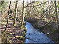 SW7350 : Stream in the Jericho Valley below Barkla Shop by Rod Allday