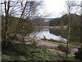 SK0943 : Brookleys Lake, Wootton Lodge Estate by John Brightley