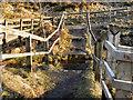 SD9507 : River Medlock Ford by David Dixon