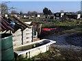 SU6894 : Rubber Duck in the Bath by Des Blenkinsopp