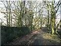 SE1936 : Bridleway past Ravenscliffe Mills, Calverley by Humphrey Bolton