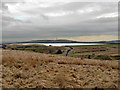 SD8216 : Cheesden - View to Ashworth Moor Reservoir by David Dixon