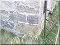 SJ4973 : Cut Mark, Greengate Farm, Towers Lane, Alvanley by VBForever
