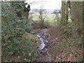 TQ4366 : Drain near the edge of Clay Wood by Mike Quinn