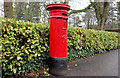 J3773 : Pillar box, Belfast by Albert Bridge