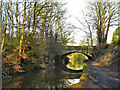 SD7400 : Bridgewater Canal, Worsley Bridge by David Dixon