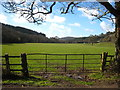 SX1265 : Pasture in the valley bottom by Rod Allday