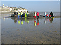 TR3663 : Dead whale on the mudflats at Pegwell Bay : Week 9 winner