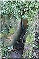SU4787 : Steps down to the pillbox by Bill Nicholls