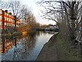 SJ7697 : Bridgewater Canal, Barton Upon Irwell by David Dixon