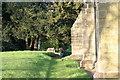 SK2607 : All Saints Church, Graveyard  (12) by Chris' Buet