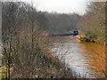 SD7300 : Bridgewater Canal by David Dixon