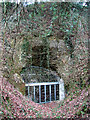 TG2006 : Entrance to the old chalk mine in Eaton, Norwich by Evelyn Simak