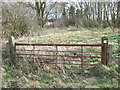 TF4616 : Rusting gate on Walpole Marsh by Richard Humphrey
