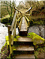 NZ0102 : Footbridge over Arkle Beck : Week 11