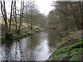SJ7984 : River Bollin by Ian Paterson
