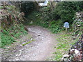 SW7728 : The footpath to Porth Sawsen by Rod Allday