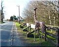 SJ7876 : Oakwood Nurseries, Chelford Road, Cheshire by Anthony O'Neil