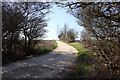 TL1367 : Footpath around Grafham Water by Simon Judd