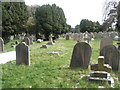 TQ1404 : A guided tour of Broadwater & Worthing Cemetery (12) by Basher Eyre