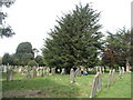 TQ1404 : A guided tour of Broadwater &amp; Worthing Cemetery (19) by Basher Eyre