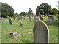 TQ1404 : A guided tour of Broadwater & Worthing Cemetery (29) by Basher Eyre