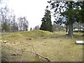 NN8310 : Ardoch Roman Camp by Elliott Simpson