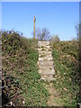 TM3053 : Steps of the footpath to the A12 Wickham Market Bypass by Adrian Cable