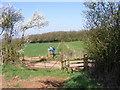 SO9880 : Brookhouse Farm Track : Week 14