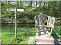 SJ8979 : Bollin Way crossing by footbridge by Peter Turner