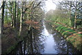 TQ0336 : Wey and Arun Canal from Farnhurst Bridge by N Chadwick