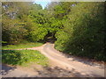 SP9901 : Junction of Blackwell Hall Road and unnamed road by David Howard