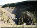 SN8493 : Clywedog gorge by Rudi Winter