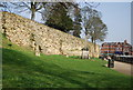 TQ5846 : Tonbridge Castle walls and War Memorial by N Chadwick