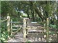 TR3644 : Kissing Gate near The Leas by David Anstiss