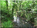 TQ3769 : The Beck at the northern end of Kelsey Park (5) by Mike Quinn