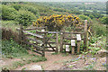 SX0661 : Lanlivery: gate and stile by Martin Bodman